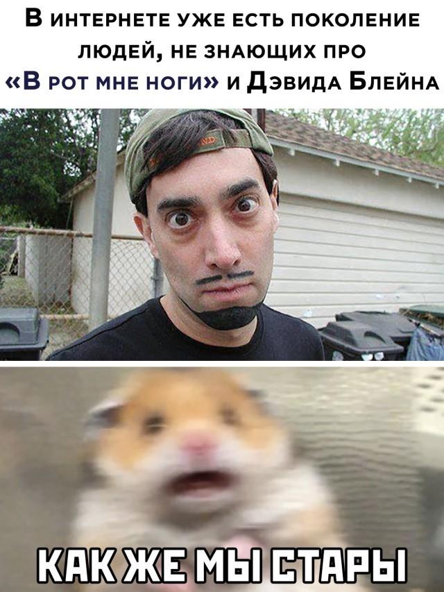 Подборка прикольных фото (30 фото) 29.01.2021