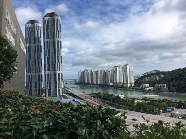 Интересные факты и фото о жизни в Южной Корее (24 фото)
