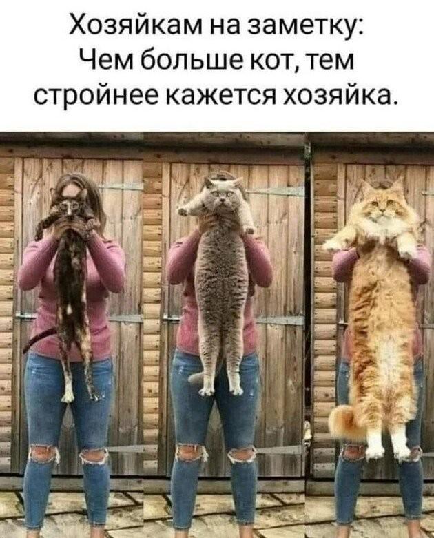 Странные и смешные лайфхаки (14 фото)