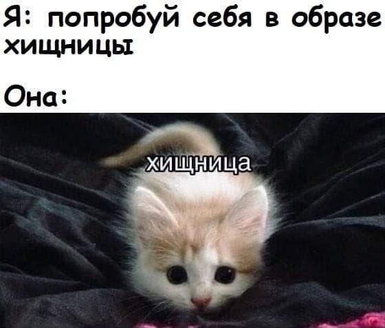"""Мемы и шутки про """"это"""" (15 фото)"""