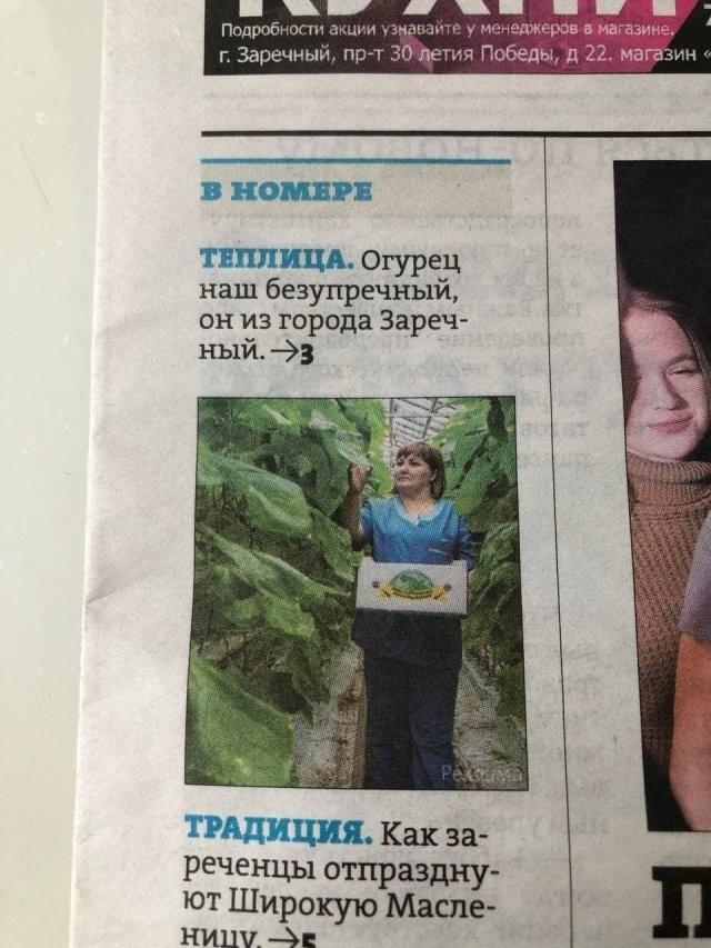 Забавные и смешные заголовки из СМИ (15 фото)