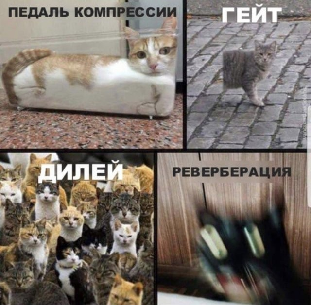Музыкальные мемы и приколы для настоящих меломанов (14 фото)