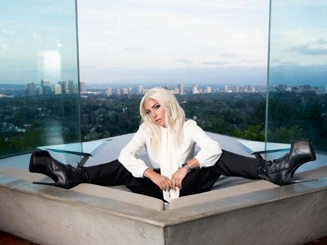 Леди Гага: путь от неизвестного автора песен до мировой звезды топ-уровня (15 фото)
