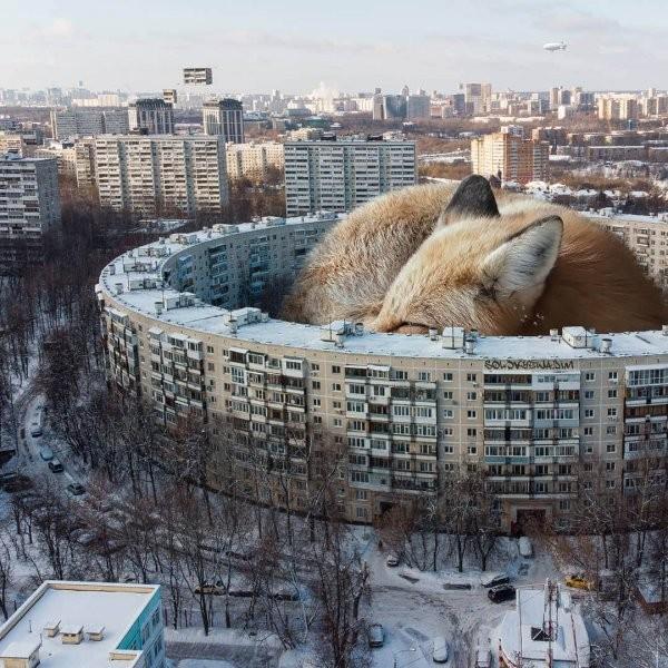 Сюрреалистическая Россия в работах дизайнера Вадима Соловьева (18 фото)