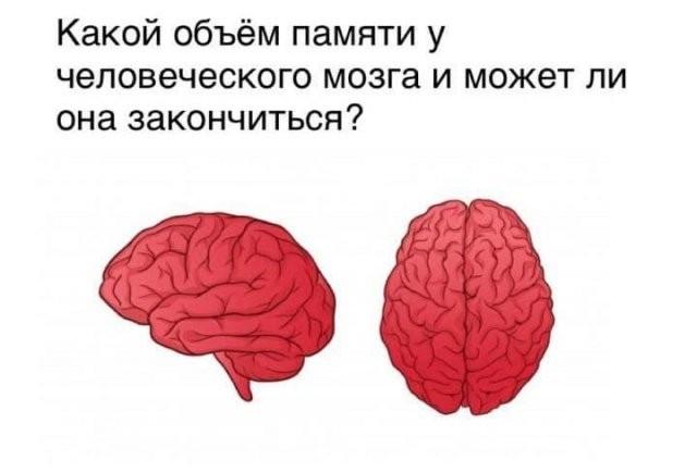 """""""Серьезные"""" философские вопросы от людей, которые настроены узнать что-то новое (15 фото)"""