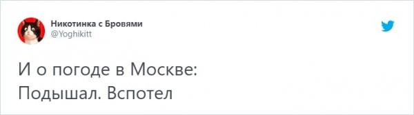 Тред в Твиттере: пользователи шутят о жаре, от которой мучаются в Москве и Санкт-Петербурге (15 фото)