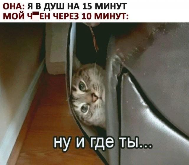 """Мемы и приколы про отношения и """"кое-что еще"""" (15 фото)"""