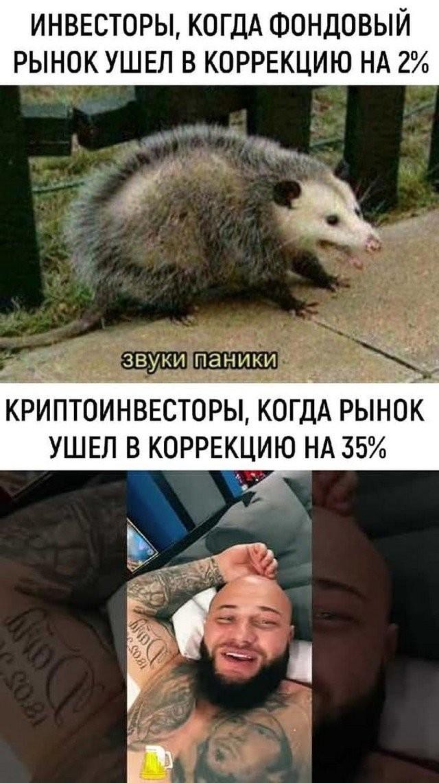 Шутки и мемы про типичного русского инвестора (13 фото)