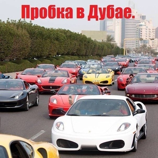 Веселые картинки 31.08.2014 (15 фото)