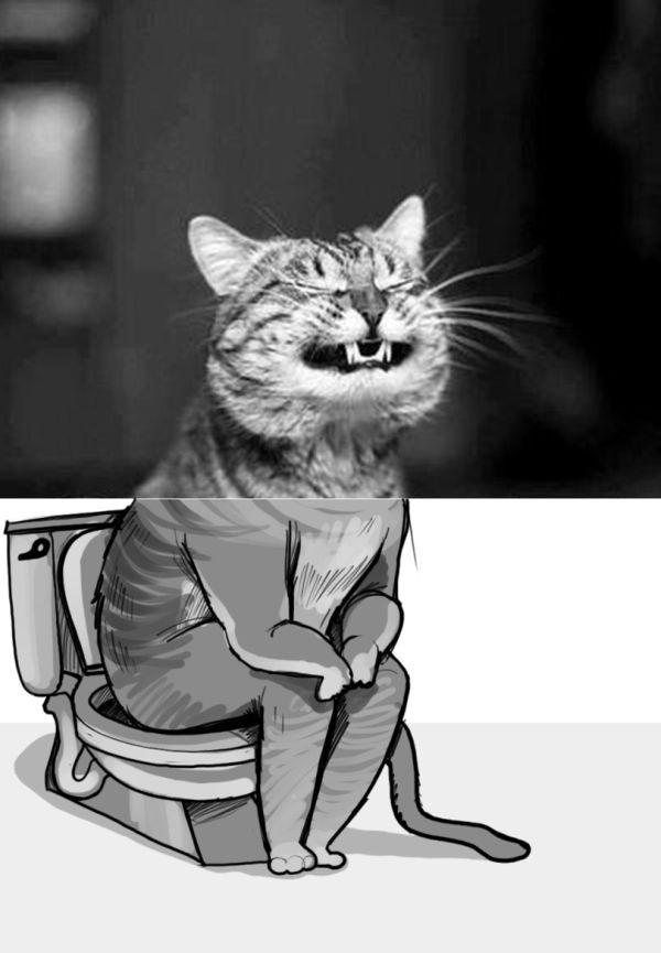 Смешные комиксы 01.09.2014 (20 картинок)