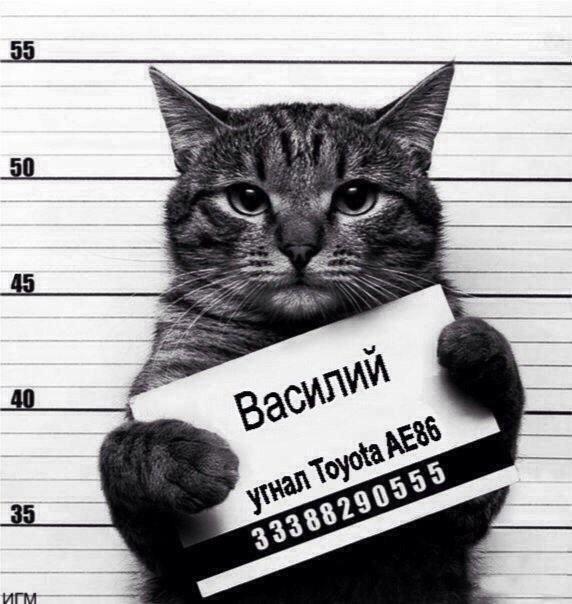 Автоприколы от 03.09.2014 (15 фото)