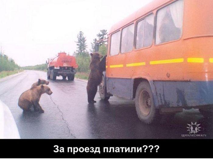 Тяжелые будни российских нефтяников (27 фото)
