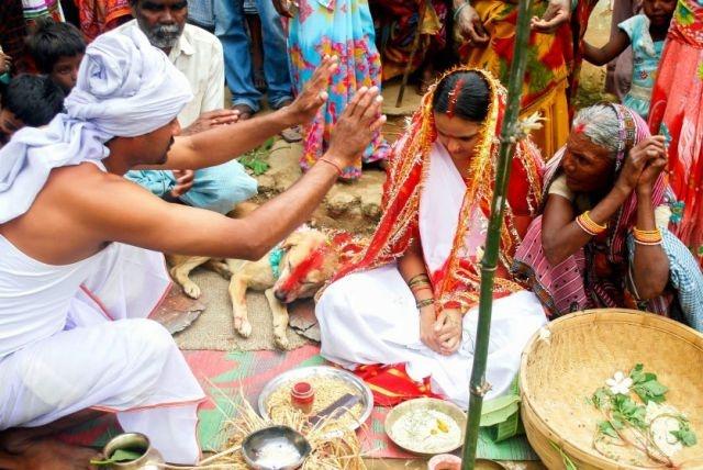 Необычная свадьба по-индийски (13 фото)