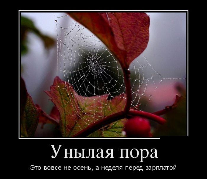 Демотиваторы 08.09.2014 (26 фото)