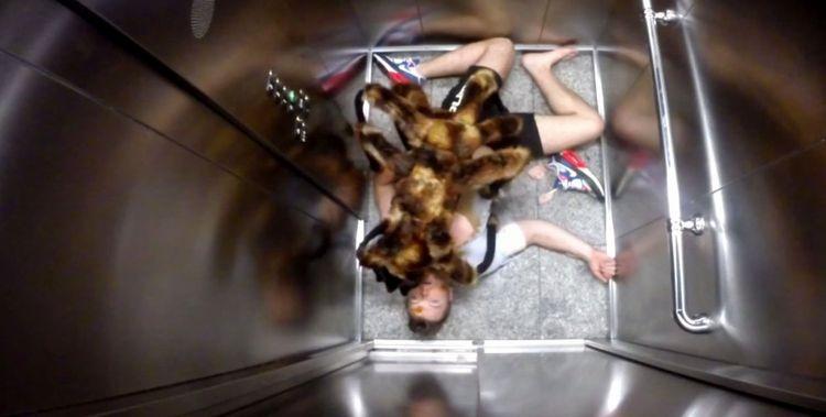 Страшный розыгрыш (1 фото + 1 видео)