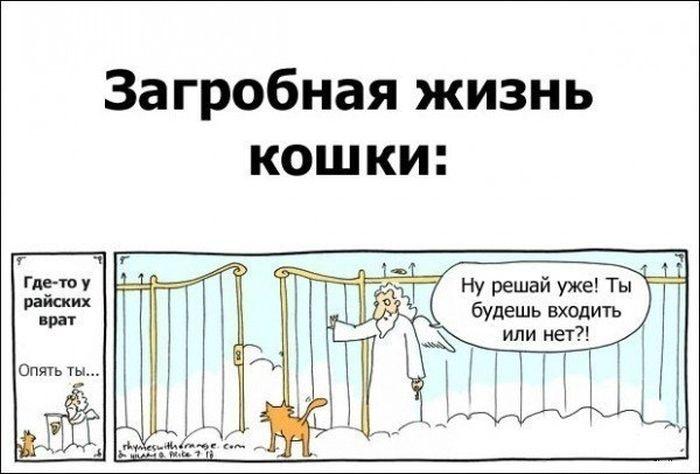 Смешные комиксы 09.09.2014 (20 картинок)
