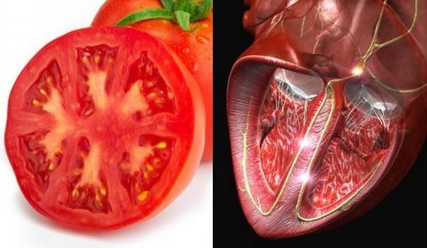10 продуктов здоровья для вашего организма (11 фото)