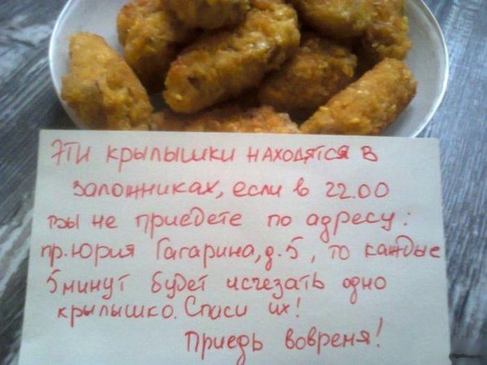 23 необычных кадра 13.09.2014