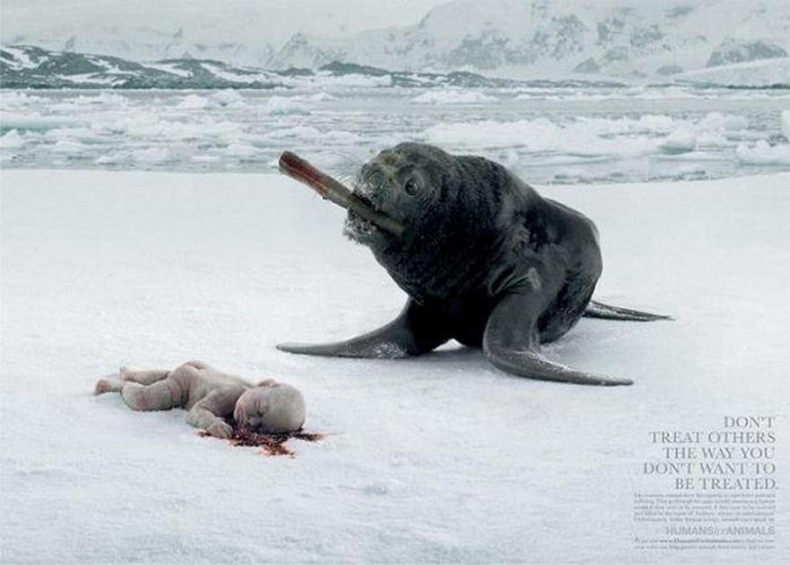 Реклама как шокотерапия (16 фото)
