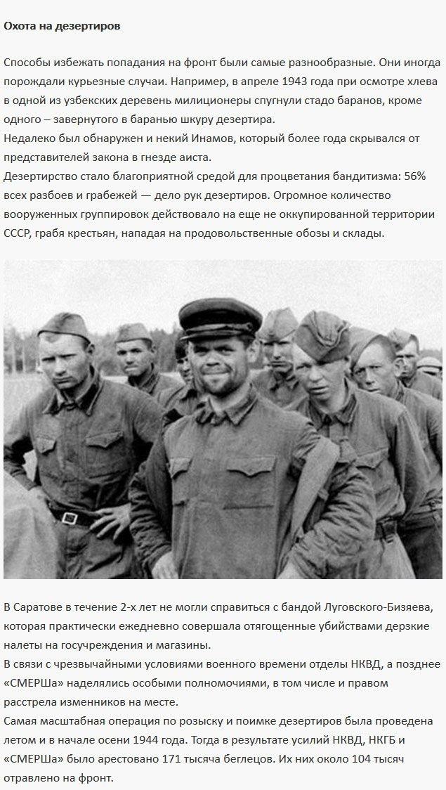 Цифры и данные о дезертирстве в годы Великой Отечественной войны (6 фото)
