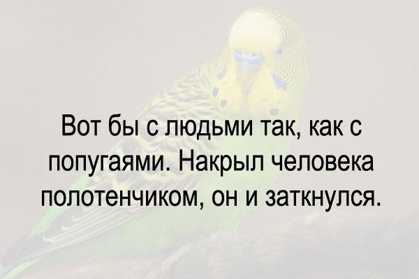 Приколы в картинках 18.09.2014 (19 фото)