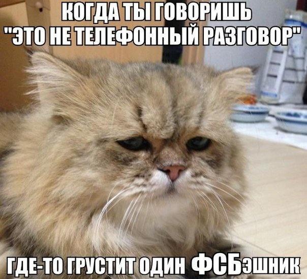 Веселые картинки 19.09.2014 (23 фото)