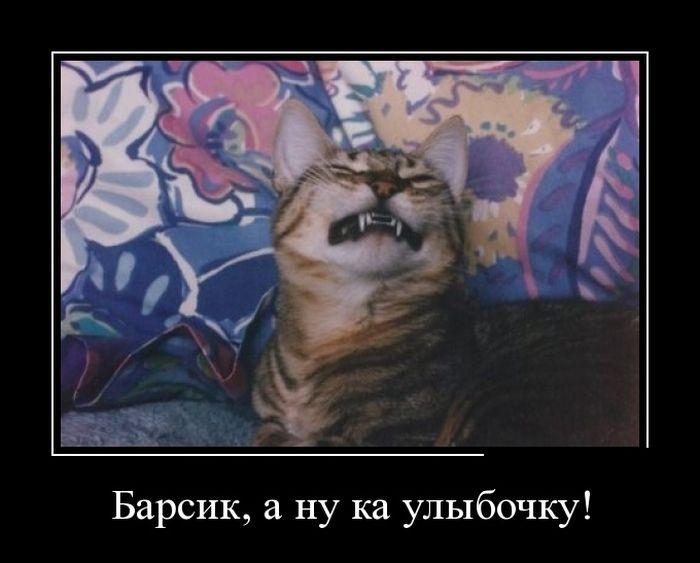Демотиваторы 20.09.2014 (10 фото)