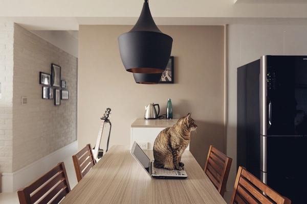 Прекрасный дом для кошки и ее хозяина (9 фото)