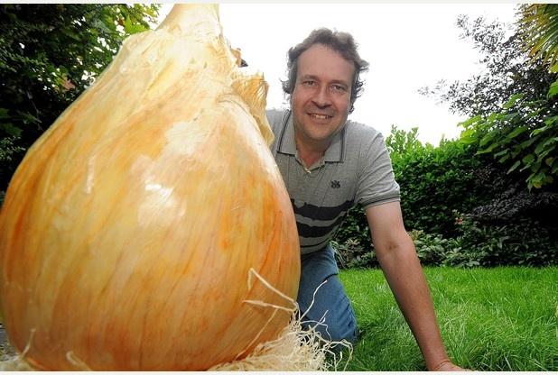 Вес самой тяжелой в мире луковицы составил 8,5 килограмма (3 фото)