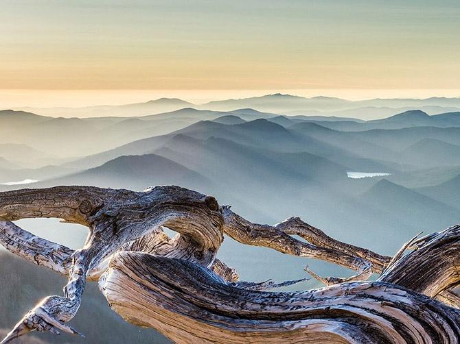 Лучшие фотографии National Geographic сентября 2014 (21 фото)