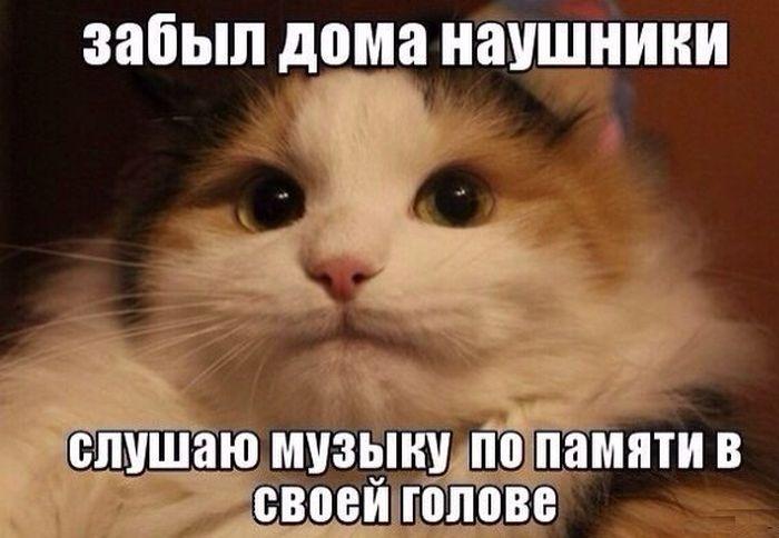 Веселые картинки 28.09.2014 (18 фото)