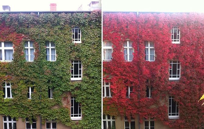 Осенние преображения: 12 пейзажей до и после (23 фото)
