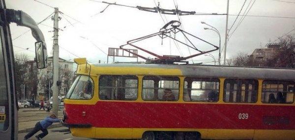 Курьезы из Краснодара (24 фото)