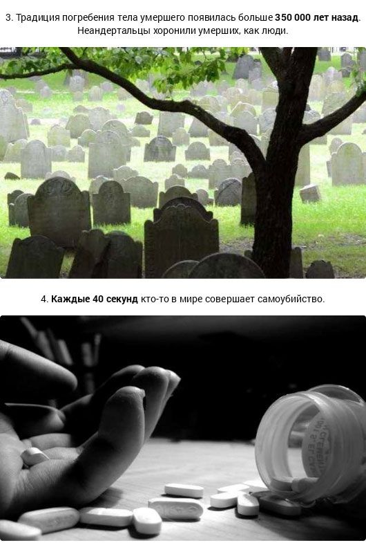 Факты о смерти (12 фото)