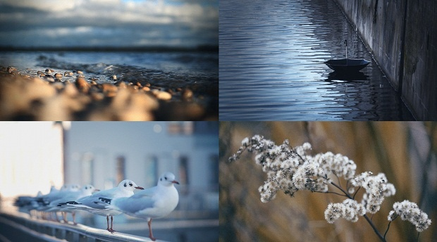 Живые фотографии Жульена Дувье (1 фото + 9 гифок)