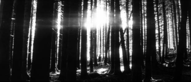 10 монументальных вех в истории кино (9 фото + 1 видео)