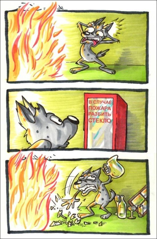 Смешные комиксы 09.10.2014 (20 картинок)