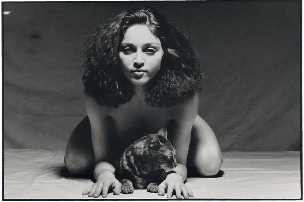 Коллекция эротических фотографий за три с половиной миллиона долларов (11 фото)