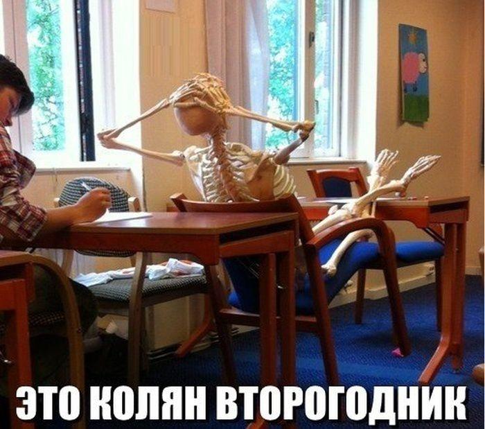 Смешные картинки с надписями 14.10.2014 (17 фото)