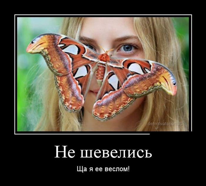 Демотиваторы 14.10.2014 (29 фото)