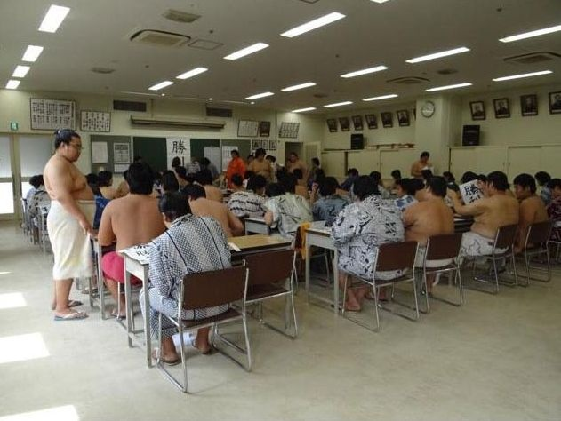 Как учатся сумоисты? (8 фото)