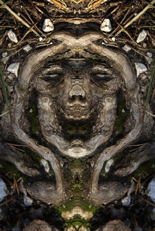 Превращение деревьев в сказочных персонажей мира фэнтези (22 фото)