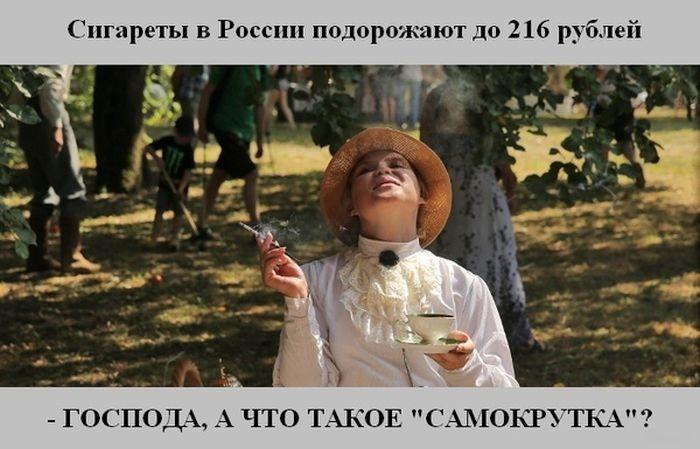 Веселые картинки 22.10.2014 (15 картинок)