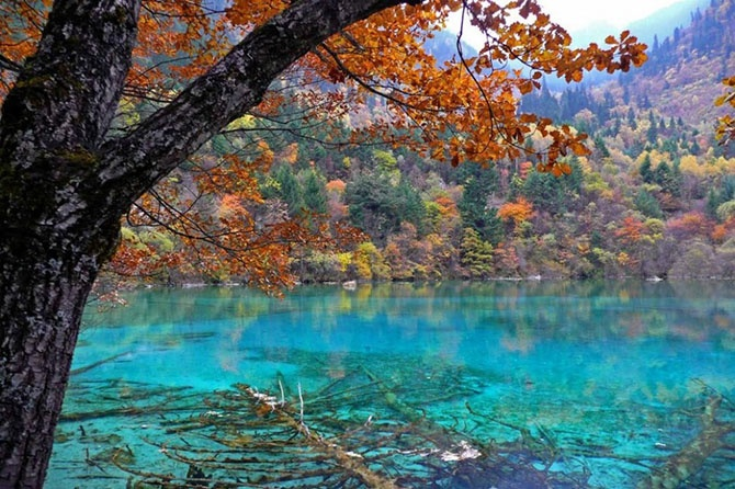 20 мест, где природа не пожалела красок (24 фото)
