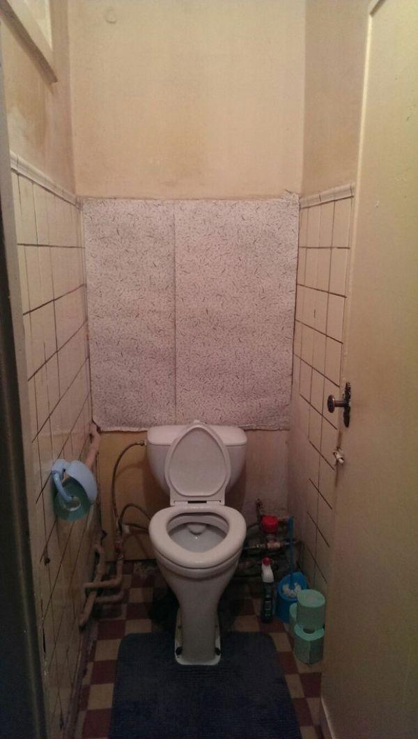 Креативный подход к оформлению туалета (14 фото)