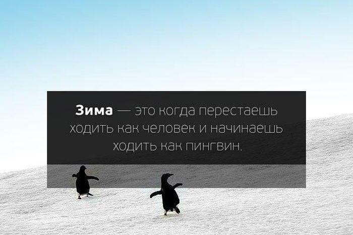 Веселые картинки 28.10.2014 (40 фото)