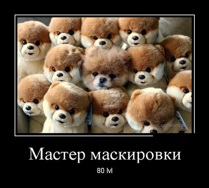 Демотиваторы 03.11.2014 (28 фото)