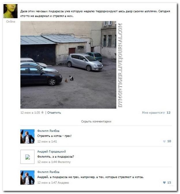 Смешные комментарии из социальных сетей от 06.11.2014 (12 фото)