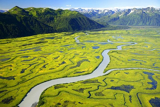 Удивительные фотографии дикой природы Аляски (12 фото)