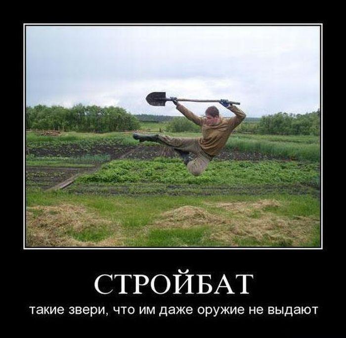 Демотиваторы 11.11.2014 (30 фото)